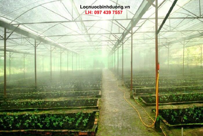 Lắp đặt hệ thống phun sương cao áp ống đồng giá rẻ