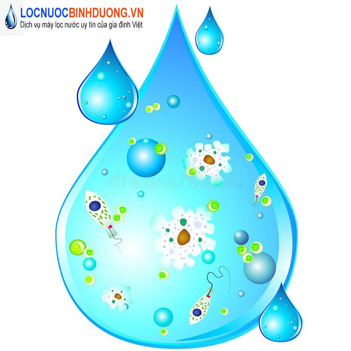 Bộ lọc nước RO có loại bỏ được các tạp chất trong nước
