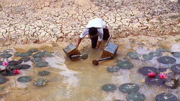 Phương pháp xử lý nước lợ hiệu quả và ít chi phí nhất